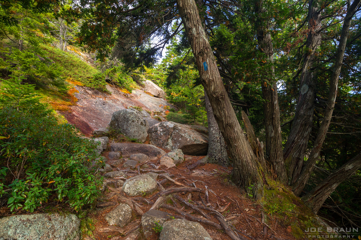 Norumbega Mountain (via Goat Trail) photo (Acadia National Park) -- © 2013 Joe Braun Photography