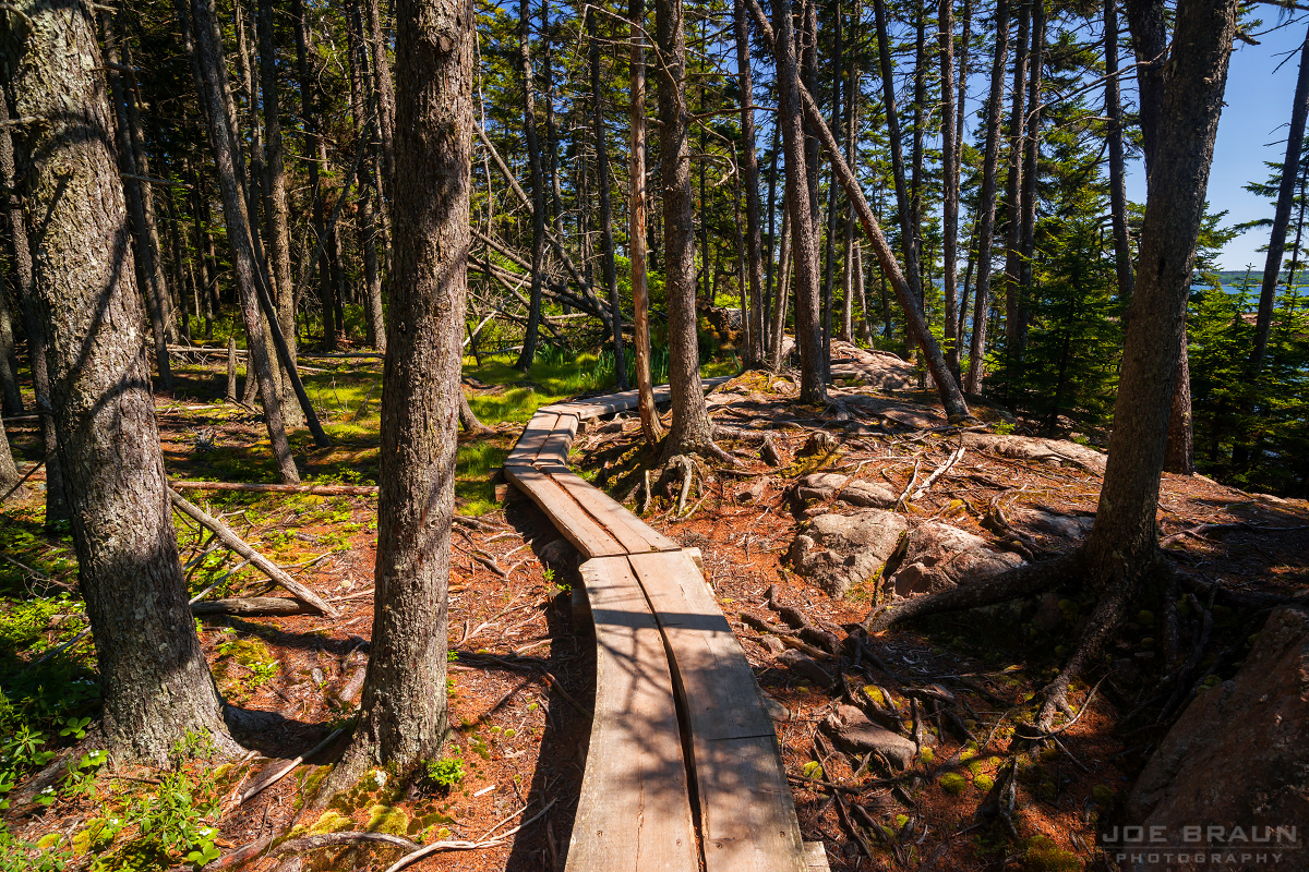 Ship Harbor Trail photo (Acadia National Park) -- © 2013 Joe Braun Photography