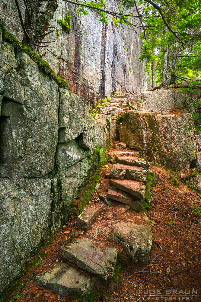 Beech Cliff Trail photo (Acadia National Park) -- © 2014 Joe Braun Photography