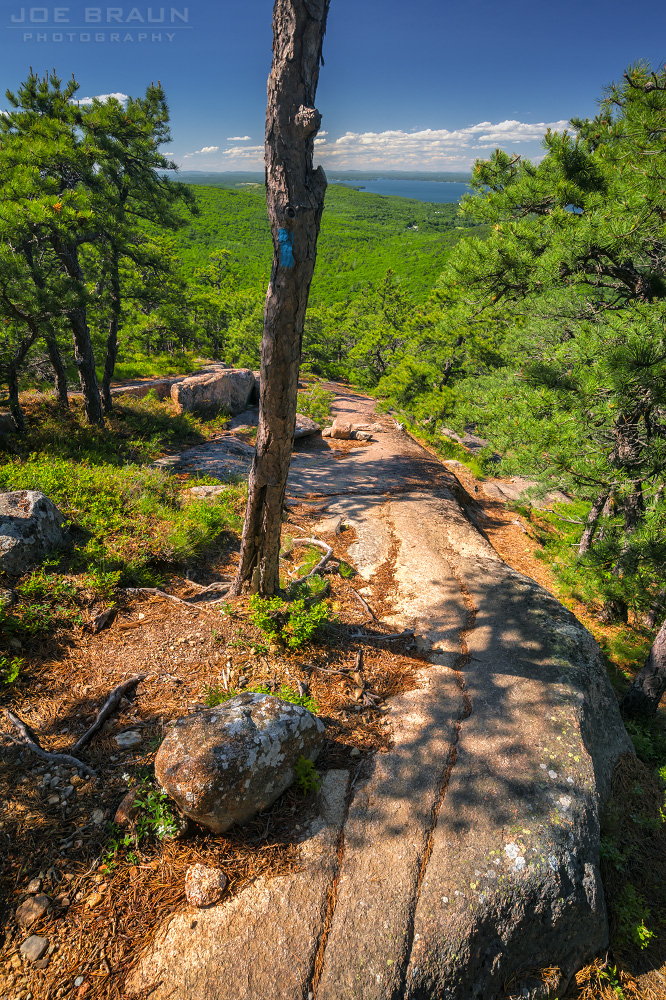 Dorr North Ridge Trail and Kebo Mountain photo (Acadia National Park) -- © 2014 Joe Braun Photography