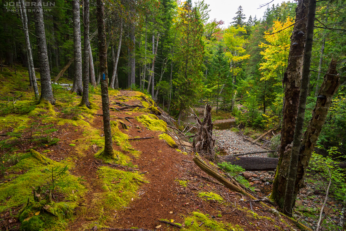 Hunters Brook Trail photo (Acadia National Park) -- © 2014 Joe Braun Photography