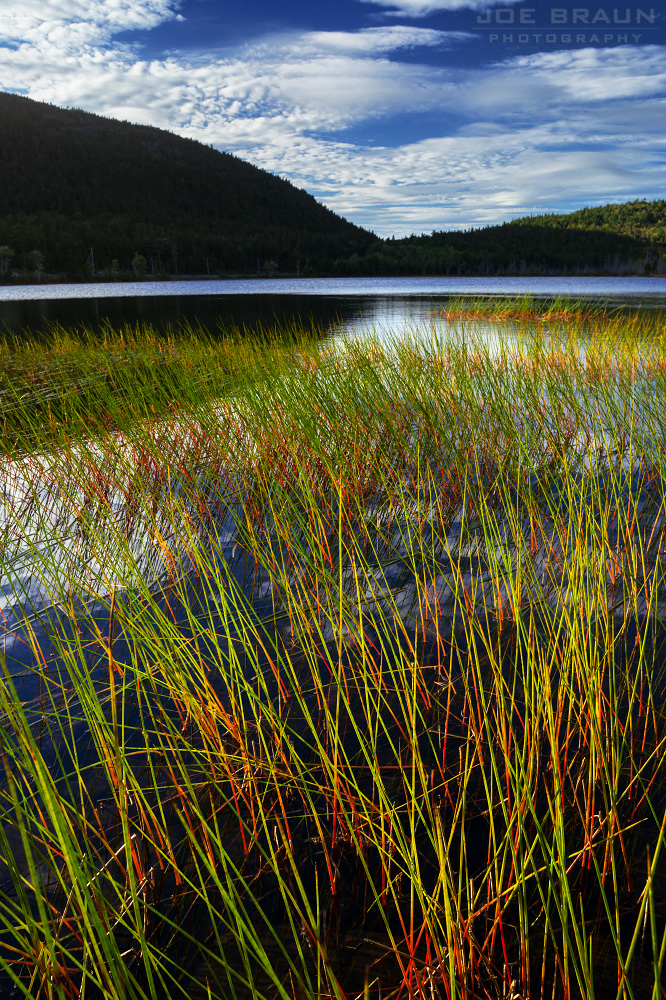 Hadlock Ponds Trail photo (Acadia National Park) -- © 2015 Joe Braun Photography