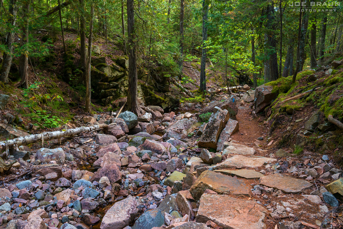 Maple Spring Trail photo (Acadia National Park) -- © 2015 Joe Braun Photography