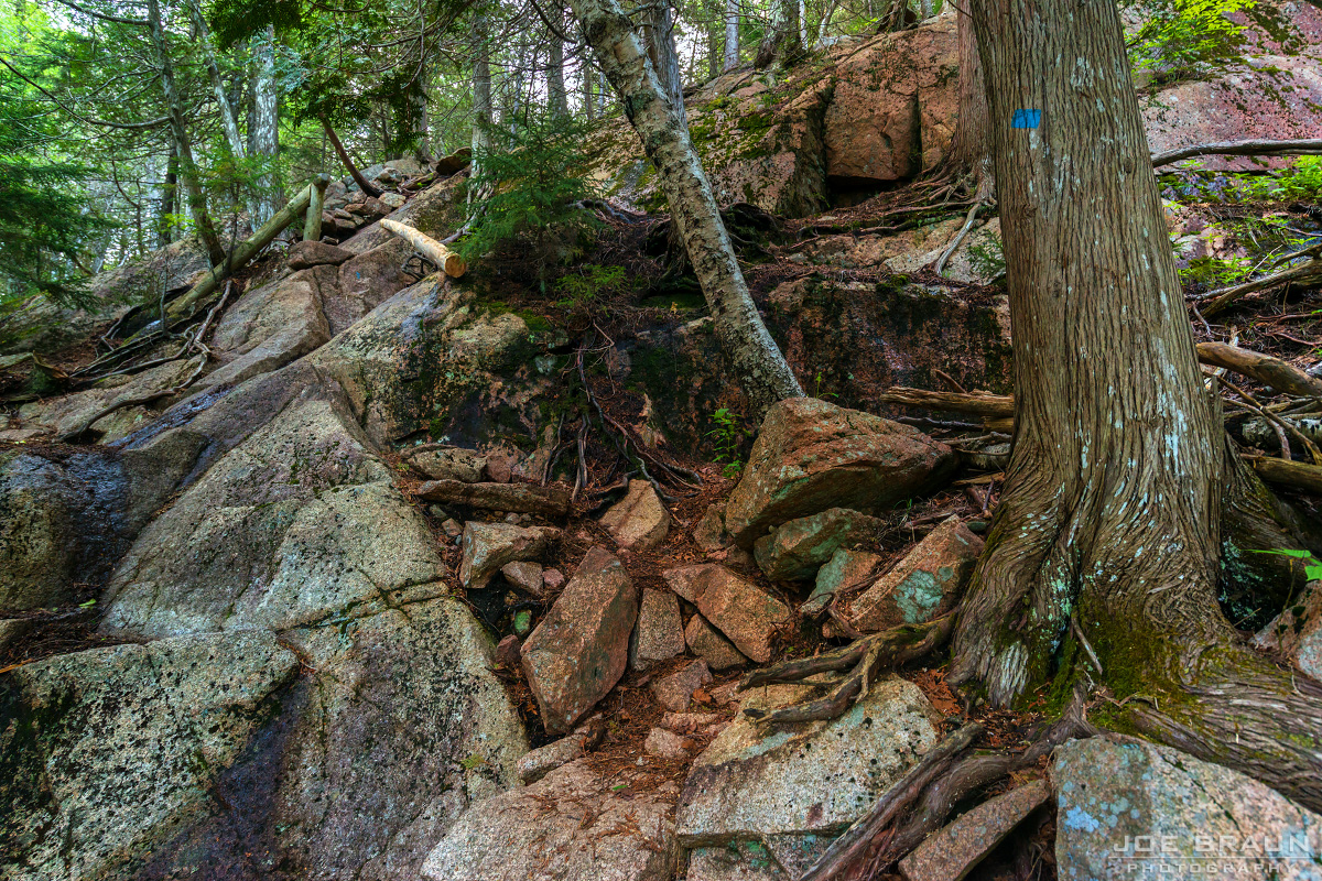 Pemetic Mountain photo (Acadia National Park) -- © 2015 Joe Braun Photography