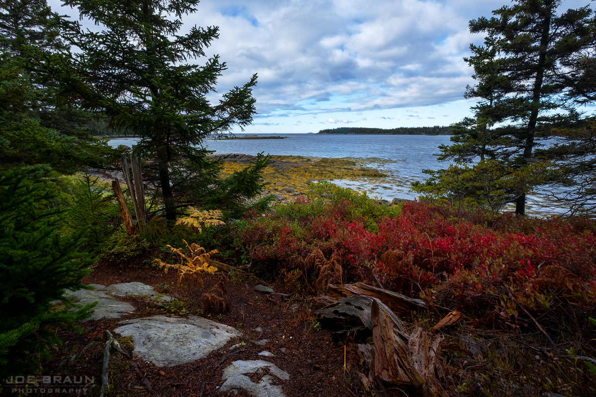 Duck Harbor Trail photo (Acadia National Park) -- © 2016 Joe Braun Photography