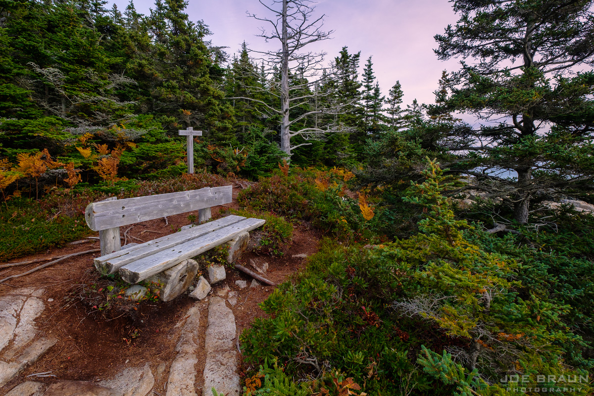 Sundew Trail photo (Acadia National Park) -- © 2016 Joe Braun Photography