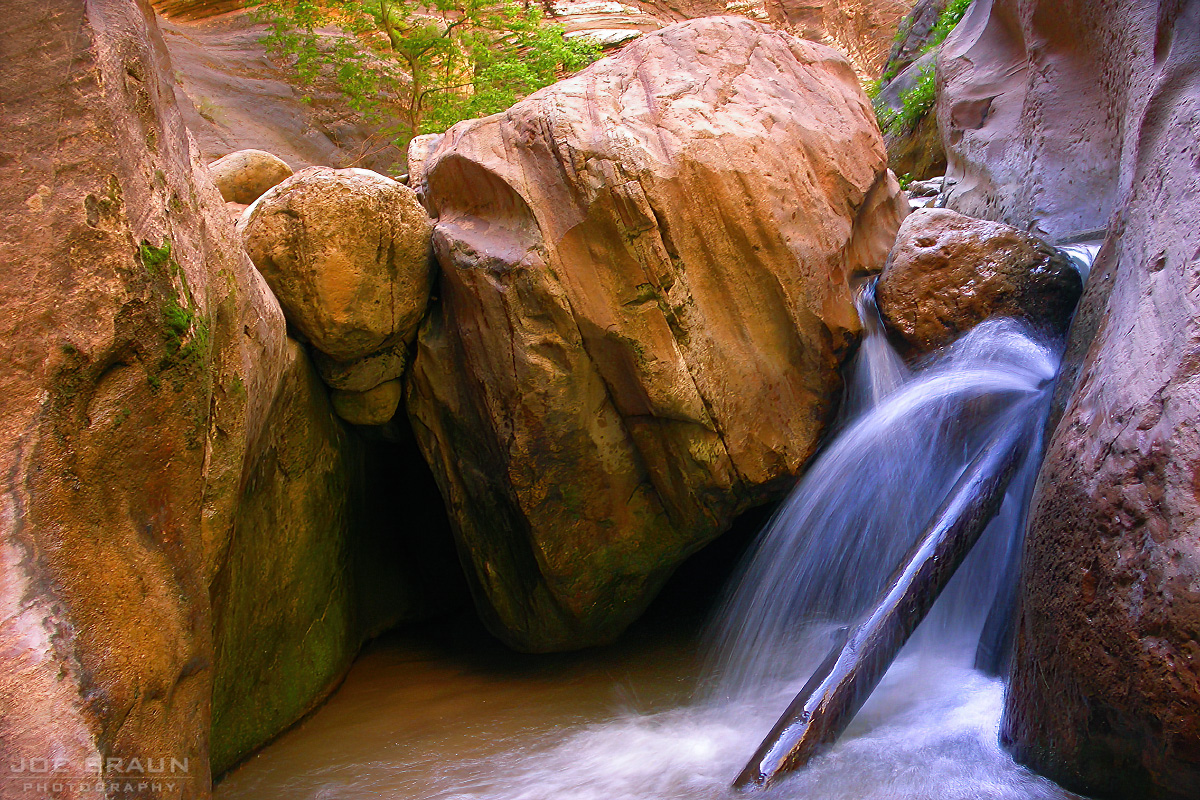 Orderville Canyon photo (Zion National Park) -- © 2003 Joe Braun Photography