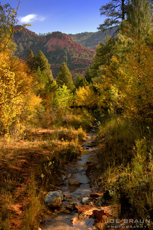 Camp Creek photo (Zion National Park) -- © 2004 Joe Braun Photography