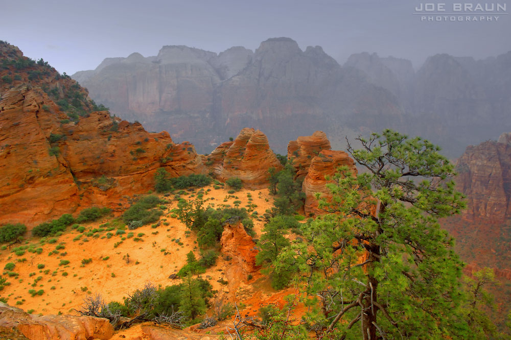 Bridge Mountain Arch Route photo (Zion National Park) -- © 2005 Joe Braun Photography