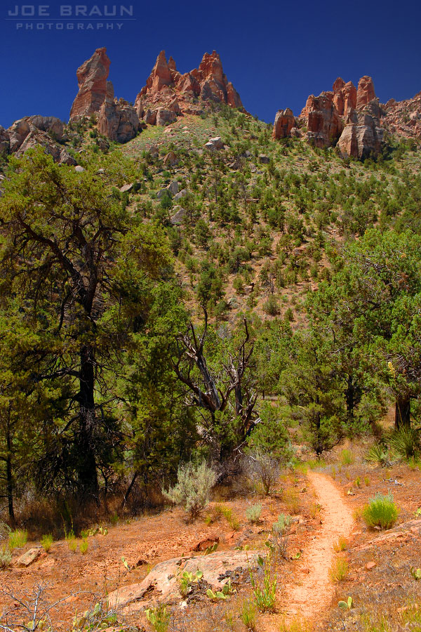 Eagle Crags Trail photo (Zion National Park) -- © 2005 Joe Braun Photography