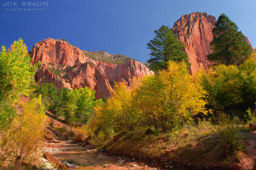 Taylor Creek Trail (Middle Fork for Taylor Creek photo (Zion National Park) -- © 2006 Joe Braun Photography