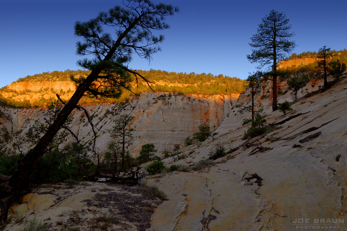 East Rim Trail photo (Zion National Park) -- © 2007 Joe Braun Photography