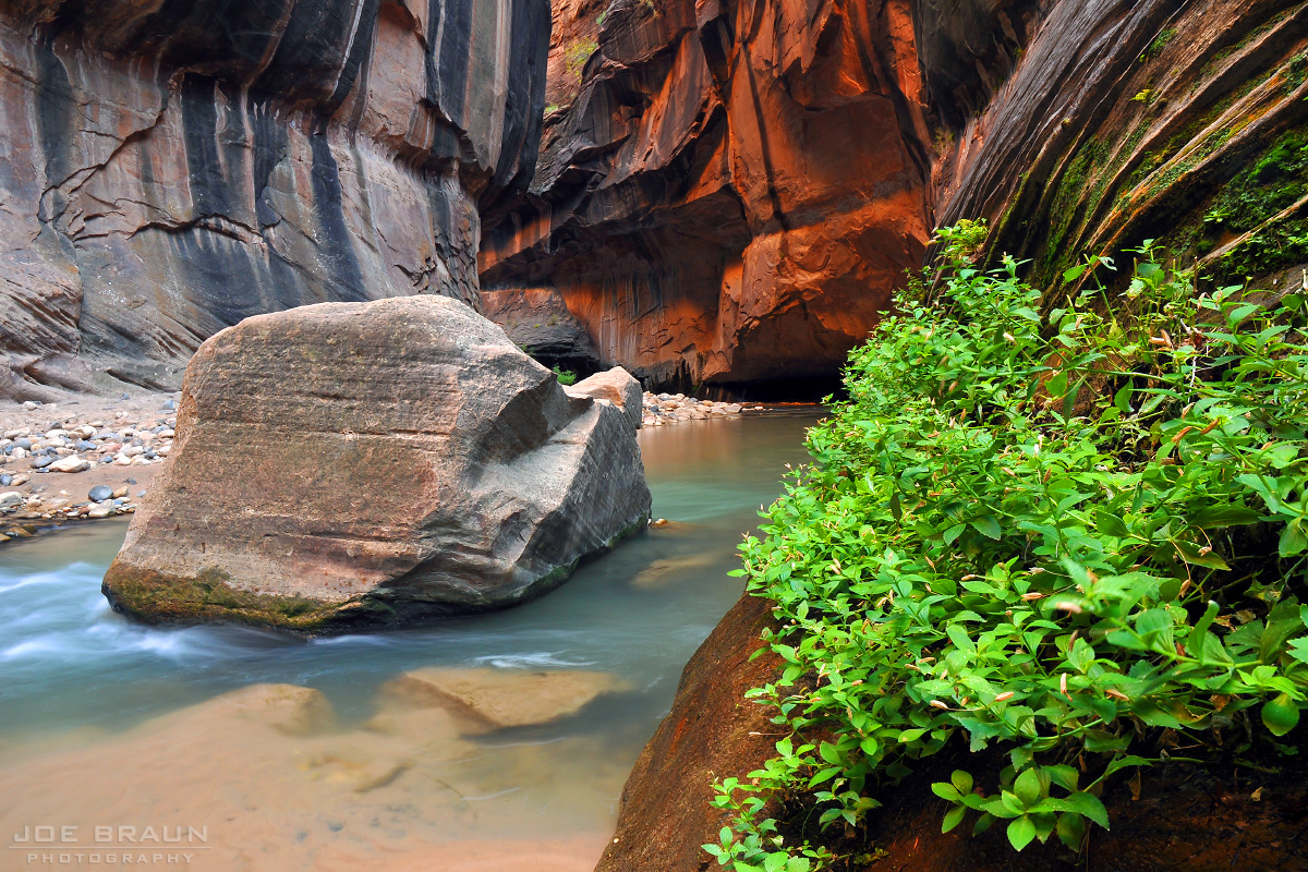 The Zion Narrows (Zion National Park) -- © 2008 Joe Braun Photography