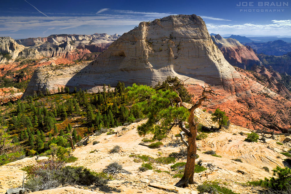 Kolob Terrace (Zion National Park) -- © 2008 Joe Braun Photography