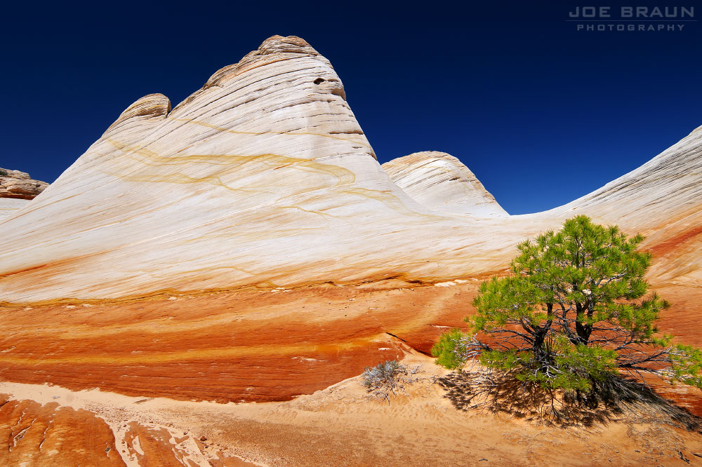 Canaan Mountain photo (Zion National Park) -- © 2010 Joe Braun Photography