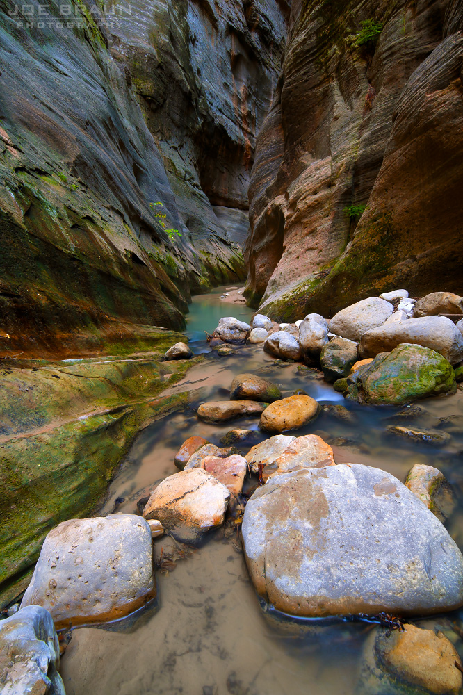 Orderville Canyon photo (Zion National Park) -- © 2010 Joe Braun Photography