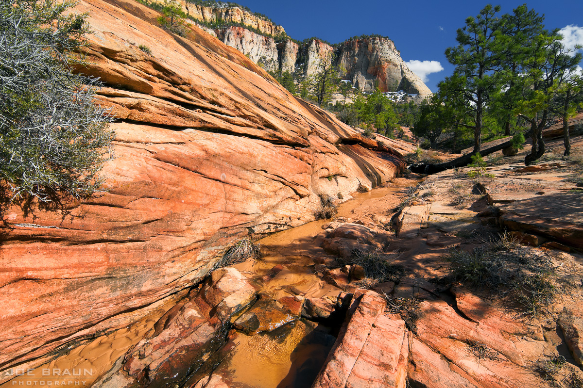 Separation Canyon photo (Zion National Park) -- © 2010 Joe Braun Photography