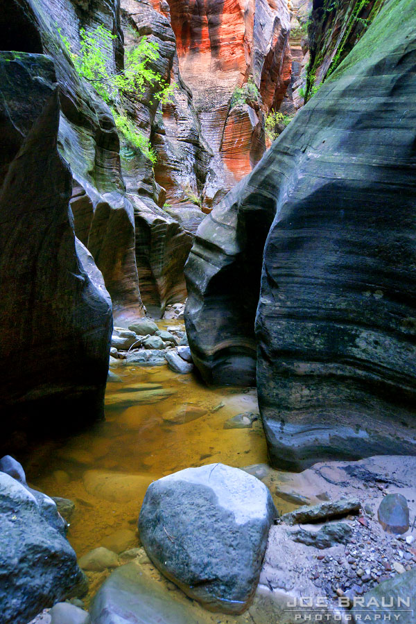 Echo Canyon (Zion National Park) -- © 2011 Joe Braun Photography