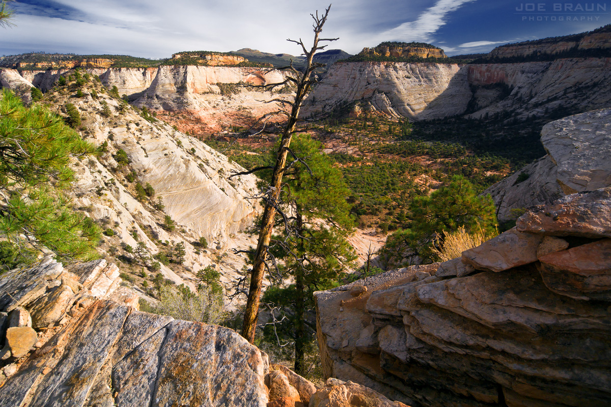 Separation Canyon photo (Zion National Park) -- © 2011 Joe Braun Photography