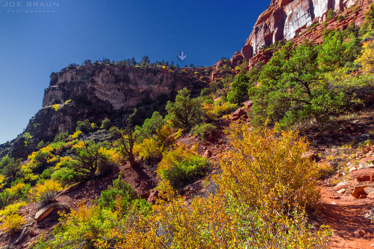Left Fork of North Creek (The Subway) photo (Zion National Park) -- © 2012 Joe Braun Photography