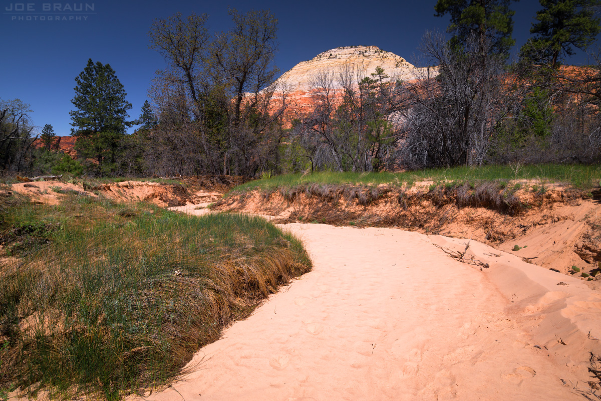 South Guardian Angel photo (Zion National Park) -- © 2013 Joe Braun Photography