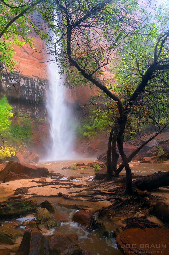Rainstorms and Flash Floods photo (Zion National Park) -- © 2014 Joe Braun Photography
