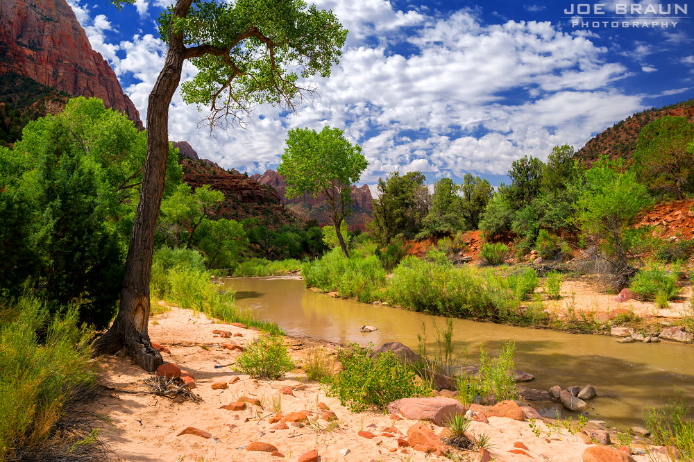 Banks of the Virgin River photo (Zion National Park) -- © 2014 Joe Braun Photography