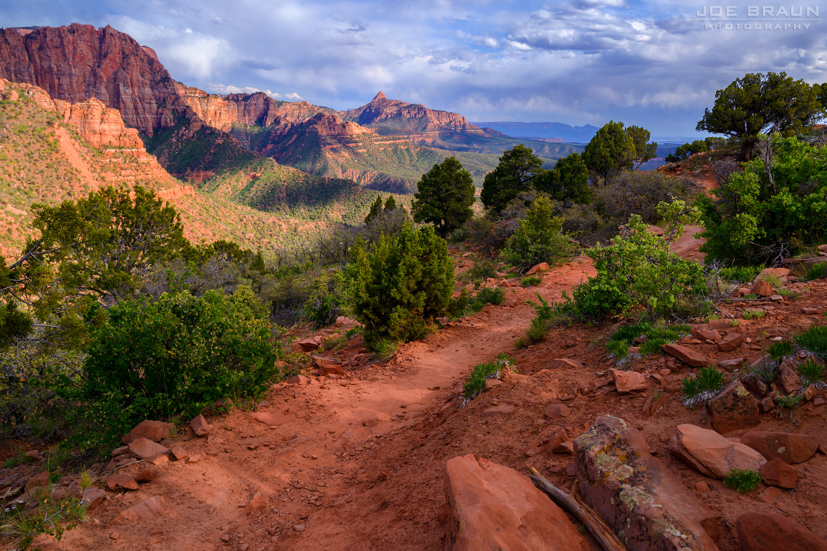 Timber Creek Overlook Trail photo (Zion National Park) -- © 2015 Joe Braun Photography