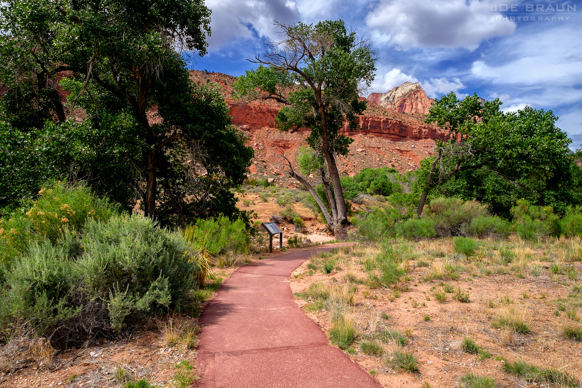 Virgin River Nature Trail, Zion Visitor Center (Zion National Park) -- Photo © 2015 Joe Braun Photography