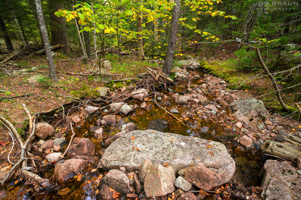 Amphitheater Trail photo (Acadia National Park) -- © 2013 Joe Braun Photography