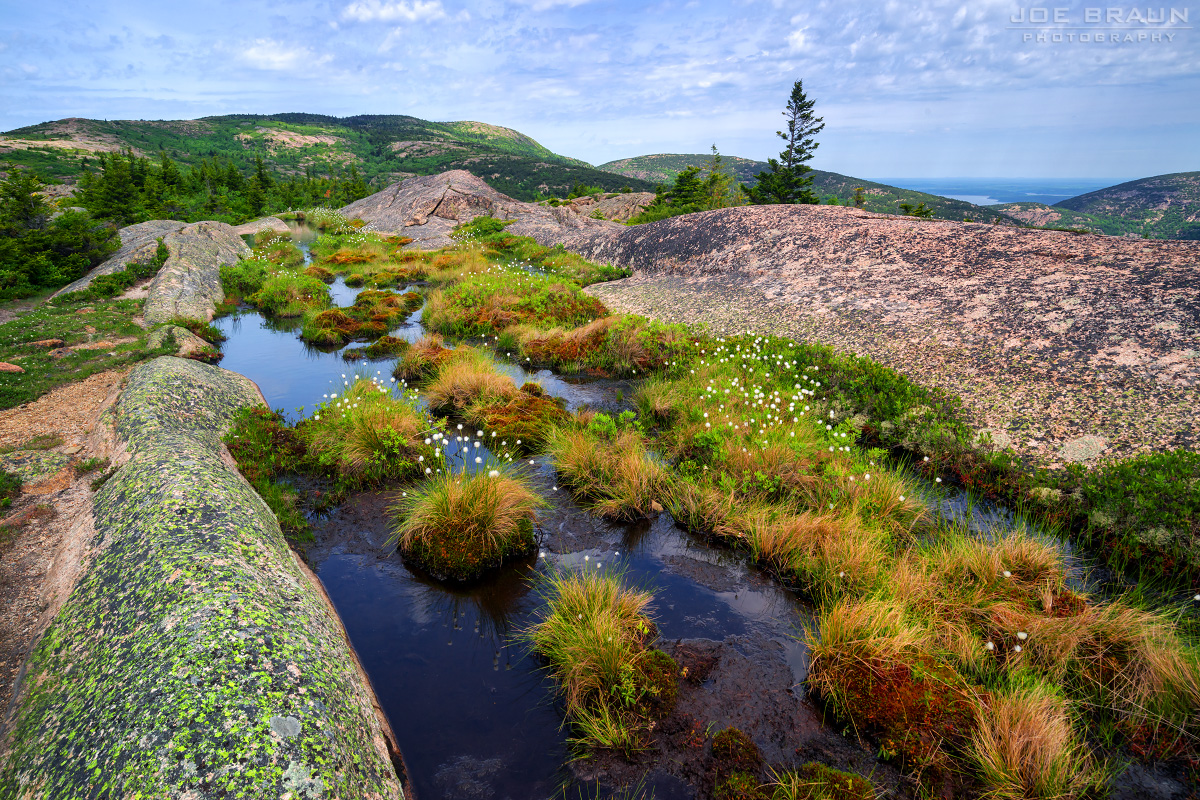 Acadia National Park, Cadillac Mountain