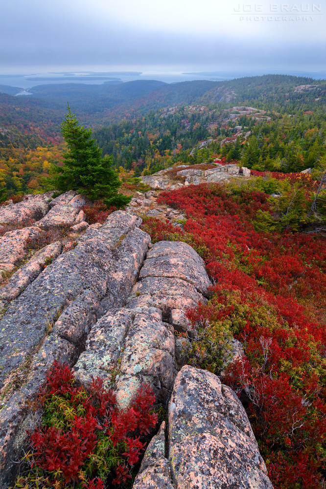Cedar Swamp Mountain photo (Acadia National Park) -- © 2014 Joe Braun Photography