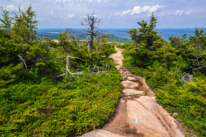 Joe S Guide To Acadia National Park Cadillac North Ridge