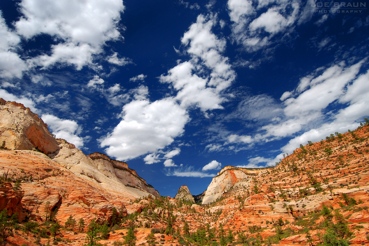 East Canyon (Zion National Park) -- © 2007 Joe Braun Photography