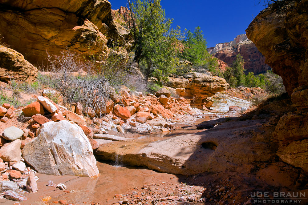 Scoggins Wash photo (Zion National Park) -- © 2010 Joe Braun Photography