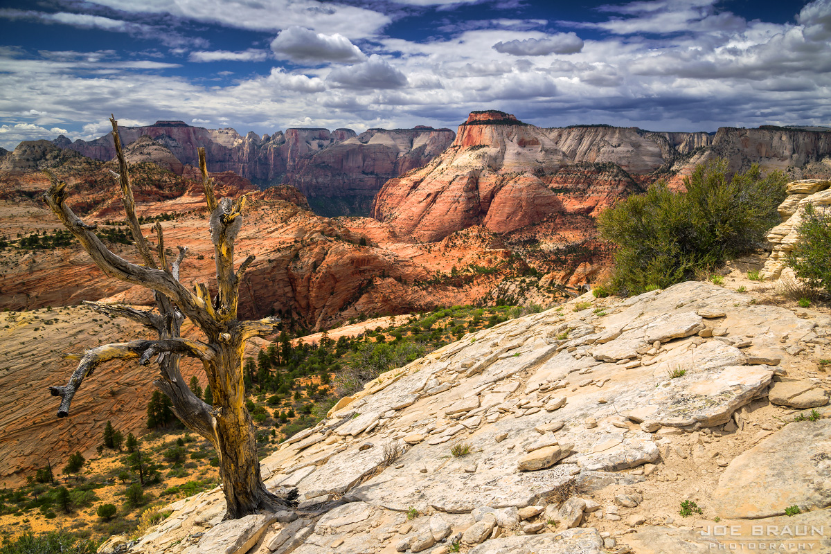 Lost Peak (Zion National Park) -- © 2013 Joe Braun Photography