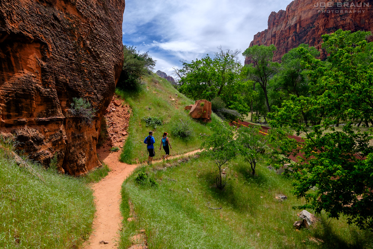Grotto Trail (Zion National Park) -- Photo © 2015 Joe Braun Photography
