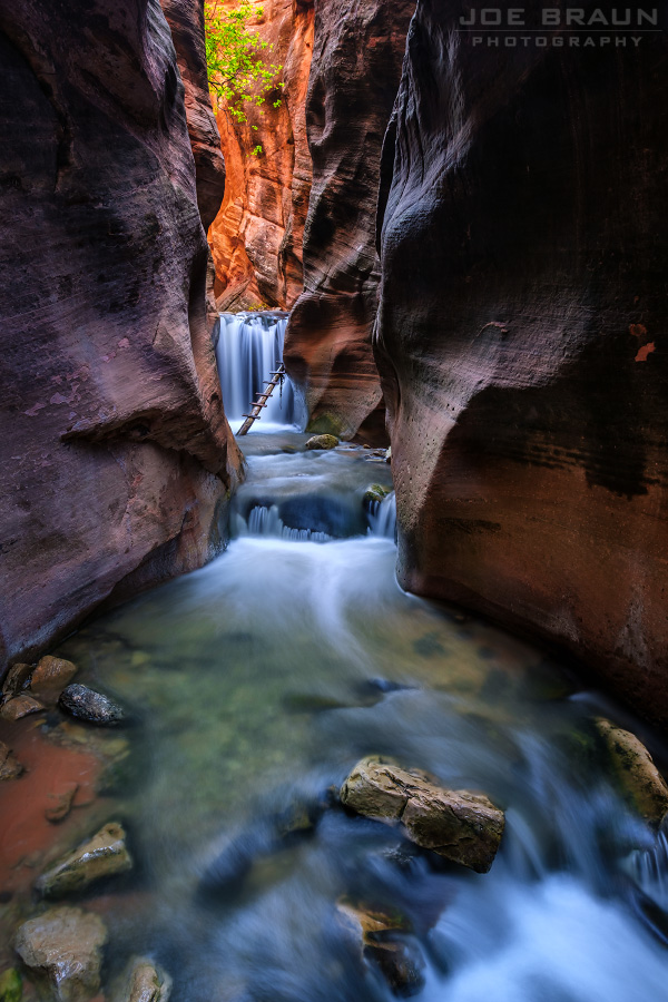 Kanarra Creek photo (Zion National Park) -- © 2016 Joe Braun Photography